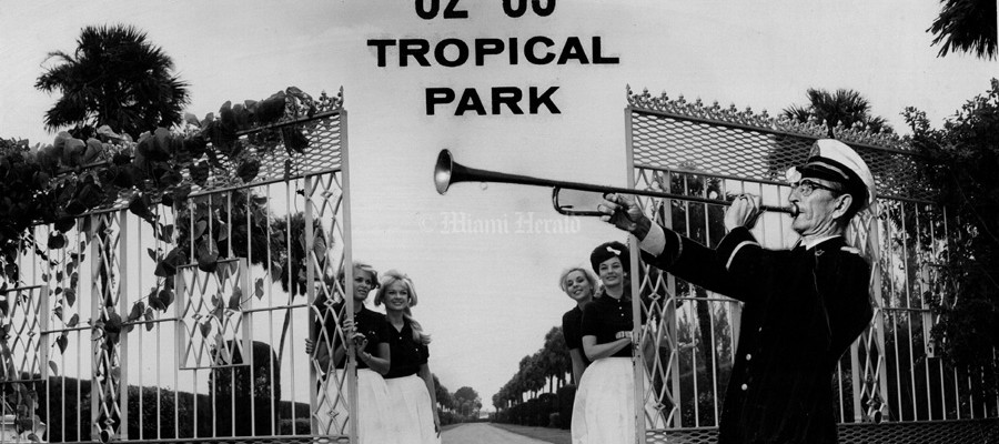 Tropical Park - Racetrack